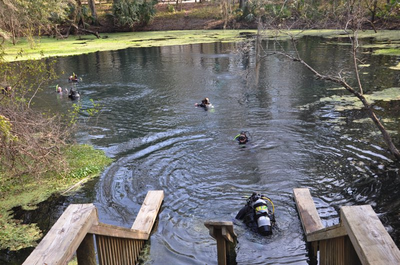 Scuba divers come from far away to dive in the underwater caves of Manatee Springs