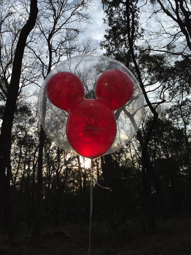 My mouse balloon was still flying in the morning!